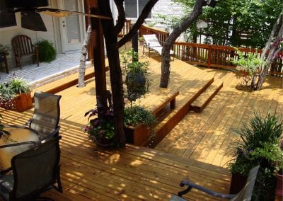 Deck with Trees and A Bench